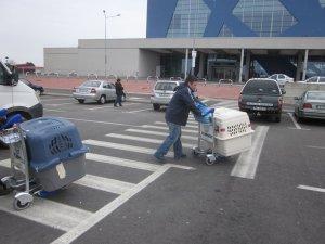 Finland here we come! Goodbye Romania! - Pia Levonen