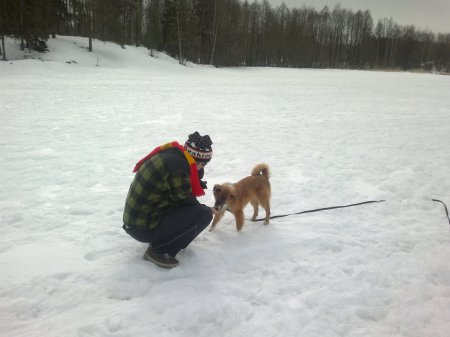 Recall training with a 10 meter leash - reward