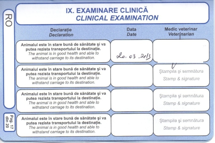 Clinical examination before travel