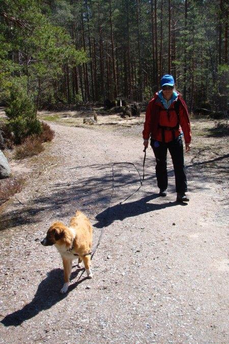 10 meters leash in the woods