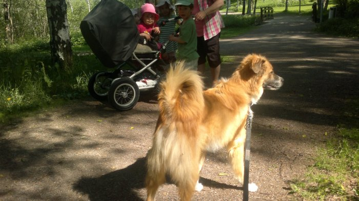 Lukas passing near by small children on a trail